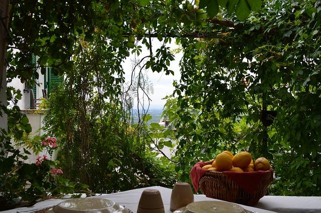 tavolo con pergolato di edera e vista mare